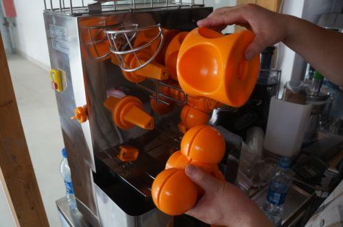 Cafe Restaurant Commercial Orange Juicer Electric Lemon